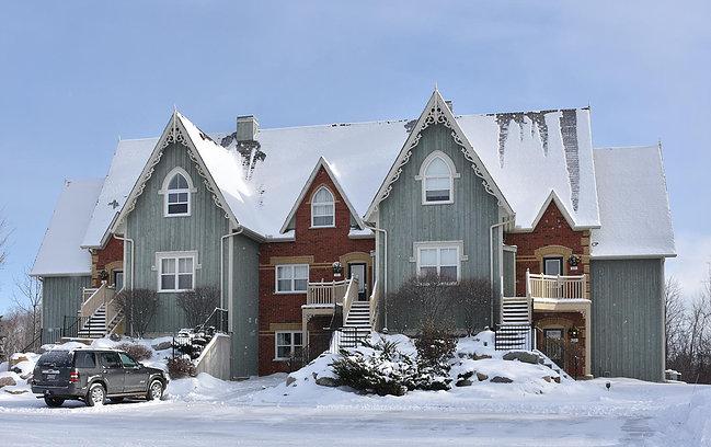 blue mountain village rentals